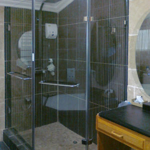 FRAMELESS SHOWER V